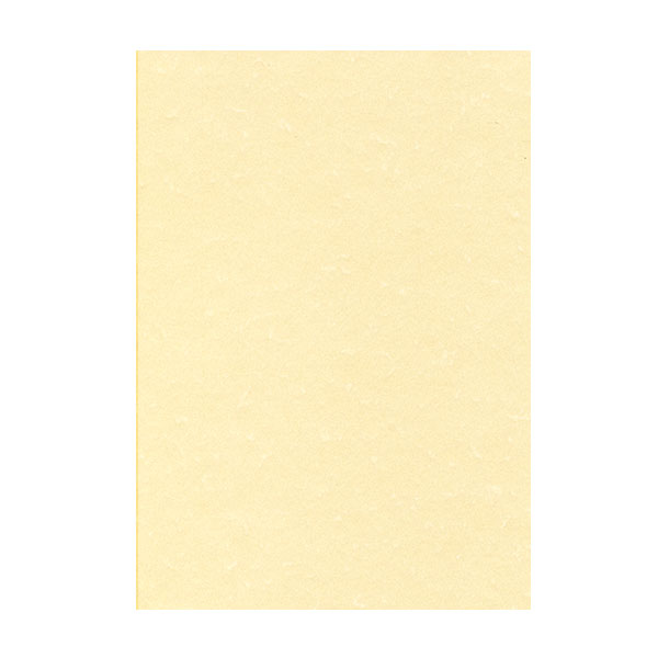Структурни хартии DECAdry Пергамент 165гр., А4 25л.